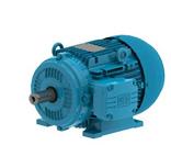 IEC Metric Motors