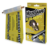 Rodent Glue Traps