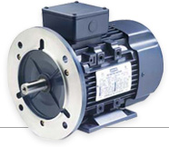 Metric 3-Phase Motors